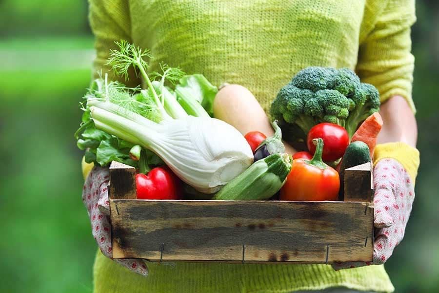 Щайга със зеленчуци, богати на витамини за пролетта.