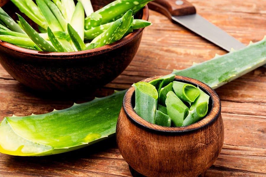 Алое вера с нарязани листа, готови за отделяне на гела, който има много здравословни приложения за тялото.