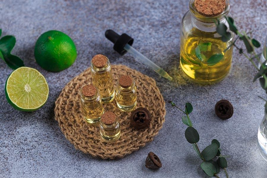 Масло и листа от евкалипт за проблеми с дихателната система
